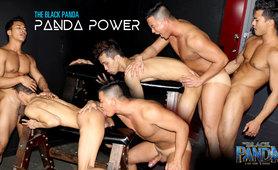 Black Panda Episode 6: Panda Power!